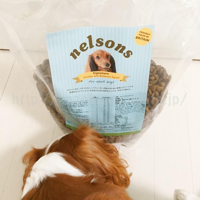 ネルソンズドッグフードのパッケージ