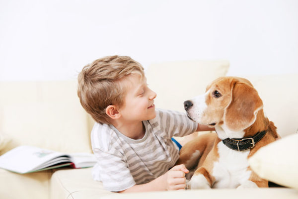 愛犬とスキンシップをとる少年