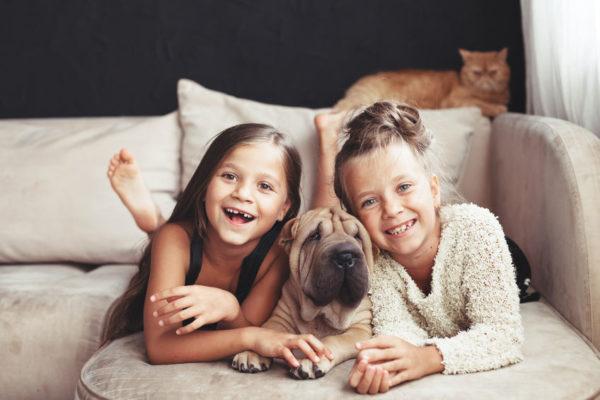 犬と触れ合う子供