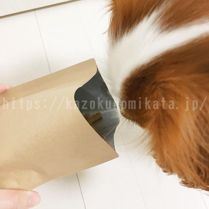 ナチュロルを手べテイル愛犬