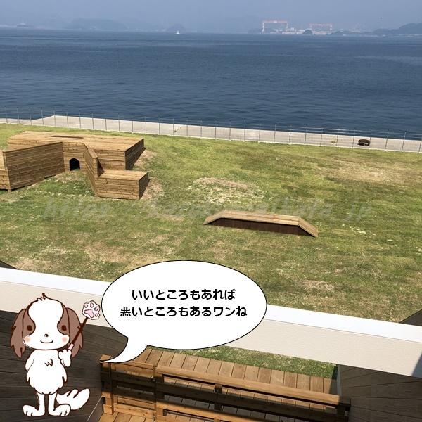 伊王島 犬 メリット デメリット